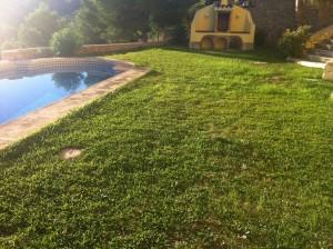 Jardín de césped natural para transformarlo en jardín de césped artificial