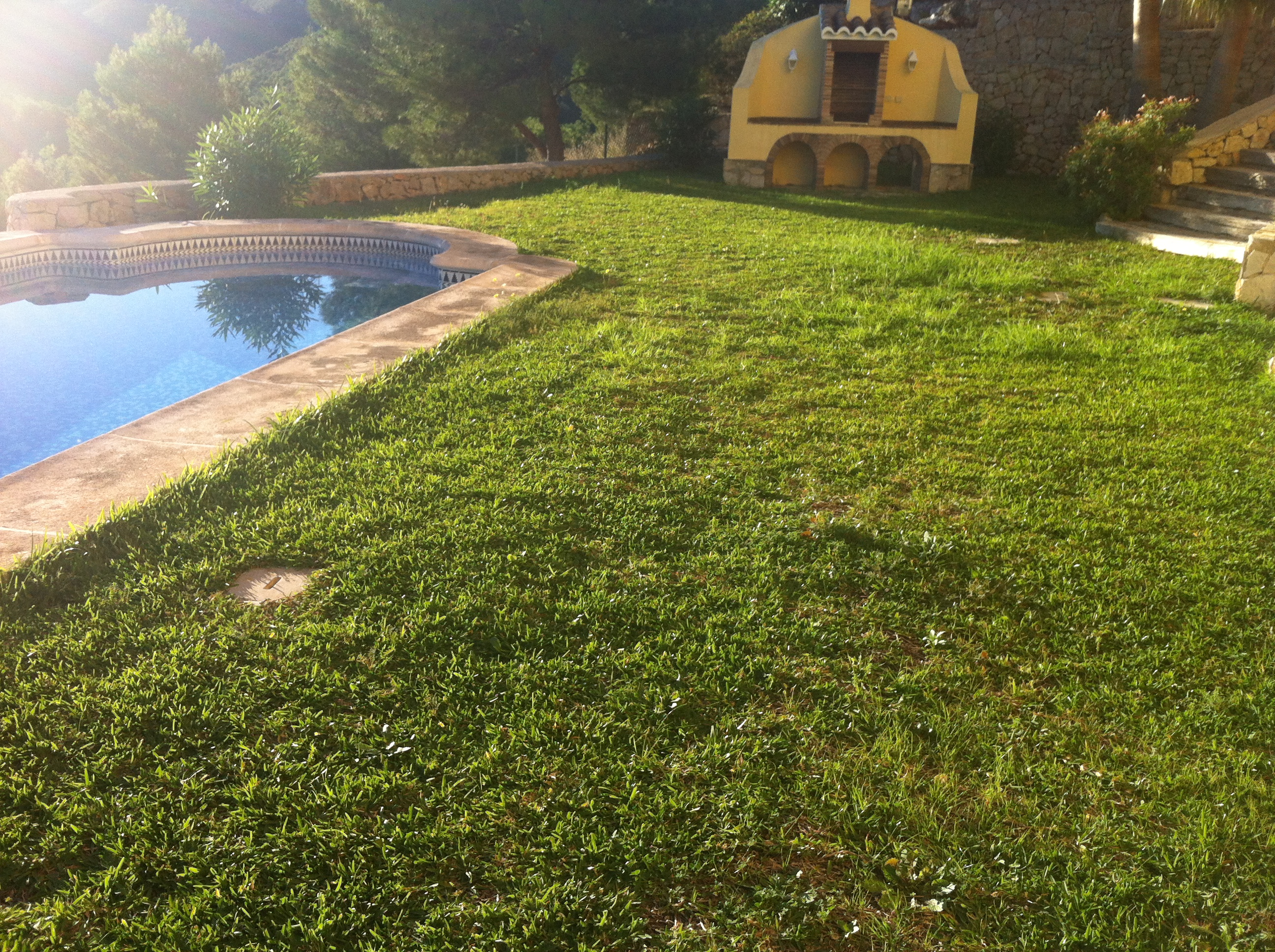 Instalaci n de c sped artificial en denia instaladores evolucion grass - Cesped natural o artificial ...